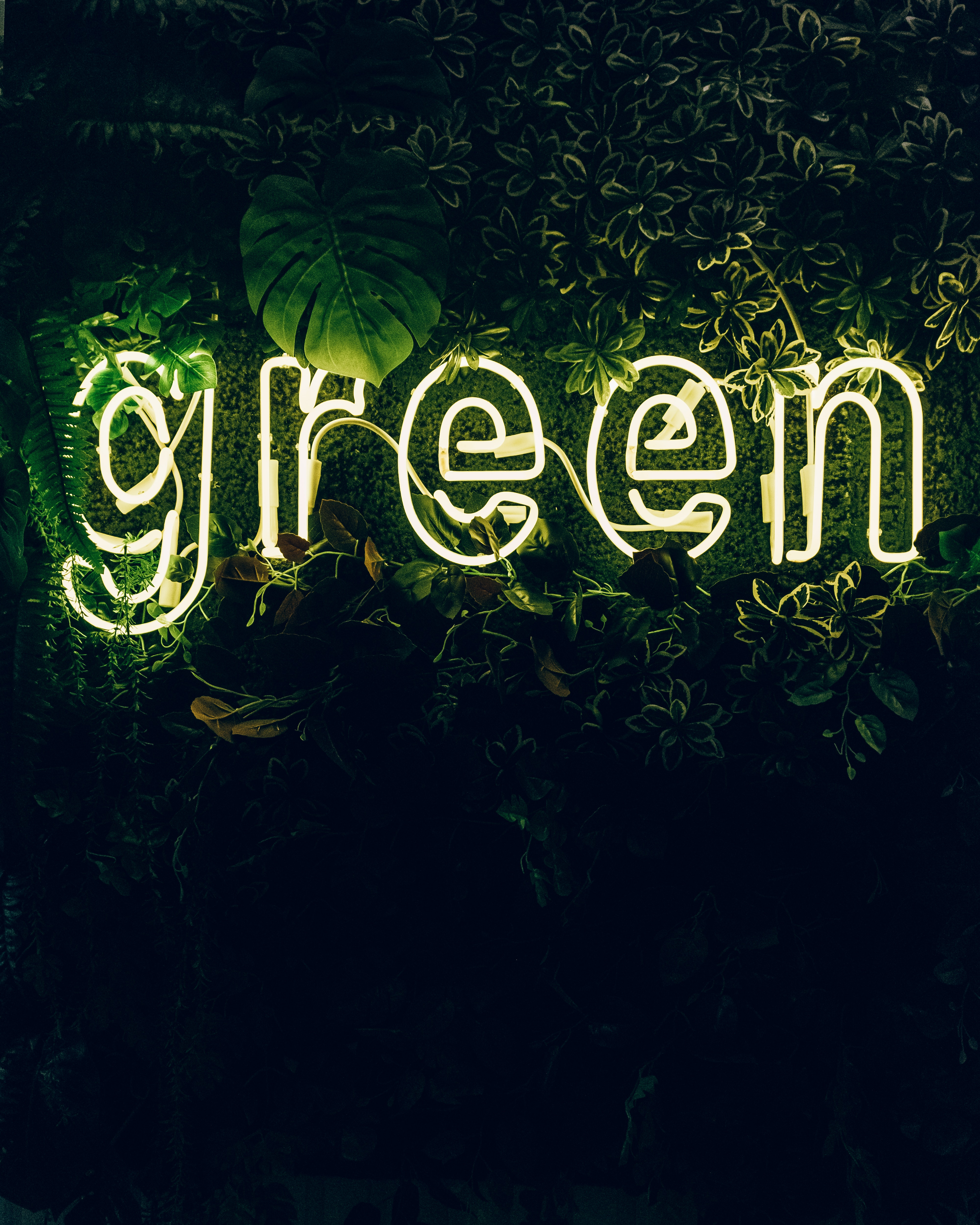 Are You Thinking of Going Green